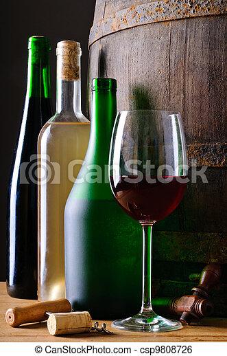 Bottles of wine - csp9808726