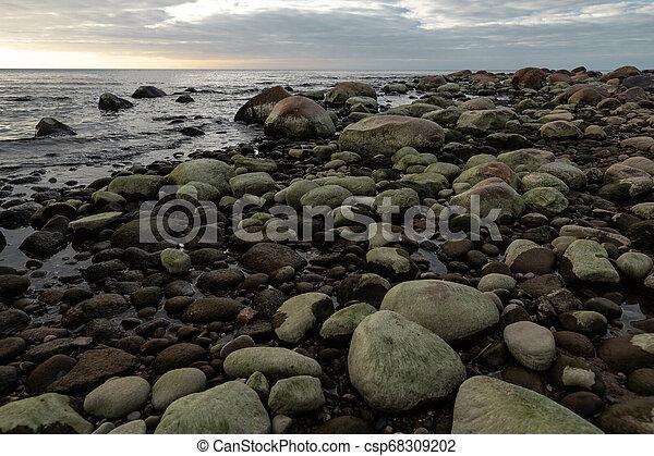 Boulder Beach Veczemju Klintis durante un atardecer nublado en Letonia con algas verdes cubiertas de rocas - 2019 - csp68309202