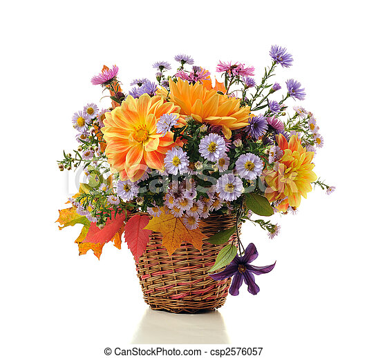 bouquet, automne, fleurs - csp2576057