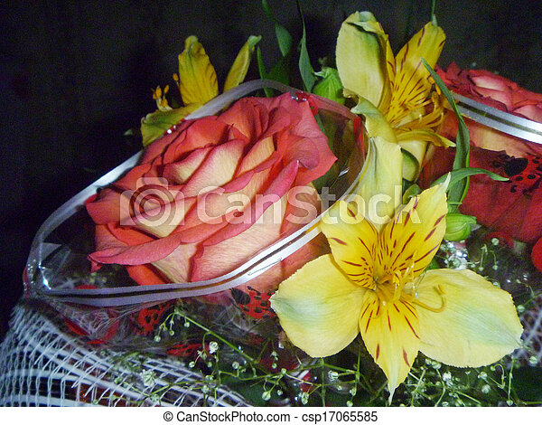 Bouquet colour on black background - csp17065585