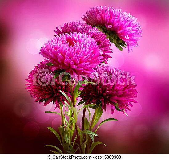 bouquet, conception, aster, fleurs, art - csp15363308