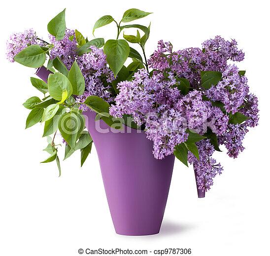bouquet, fleur, lilas - csp9787306
