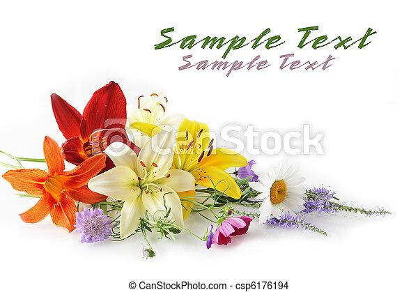 bouquet, fleur - csp6176194