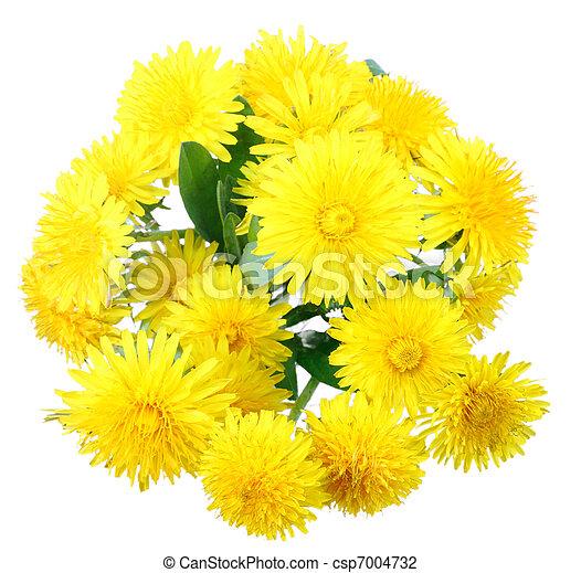 Bouquet Fleurs Jaunes Gite Pompadour Lubersac