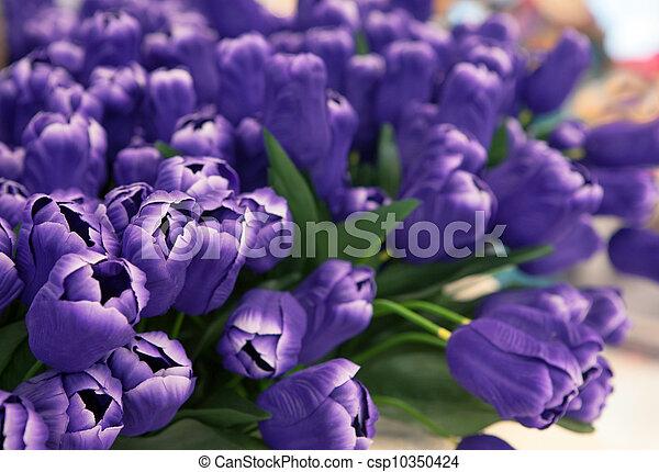 bouquet, fleurs - csp10350424