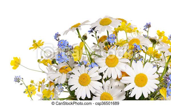 bouquet, fleurs ressort - csp36501689