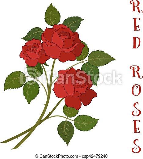 Bouquet fleurs roses rouges beau fleurs amour bouquet symbole trois cadeau roses - Dessin de rose rouge ...