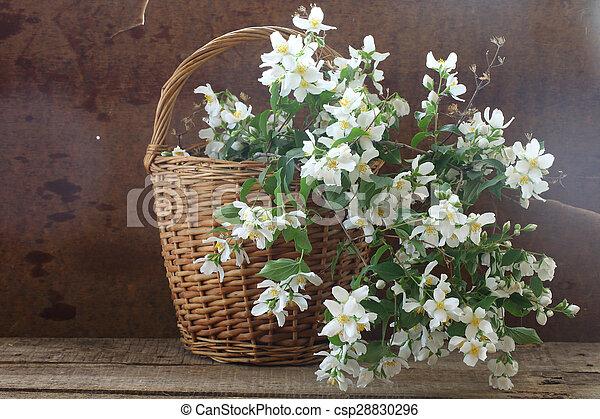 Bouquet from jasmin branches in a wattled basket on a wooden table - csp28830296