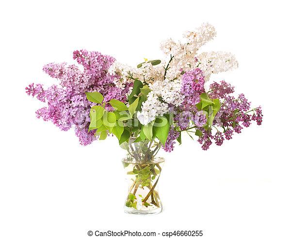 bouquet, lilas - csp46660255