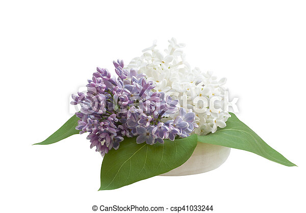 bouquet, lilas - csp41033244