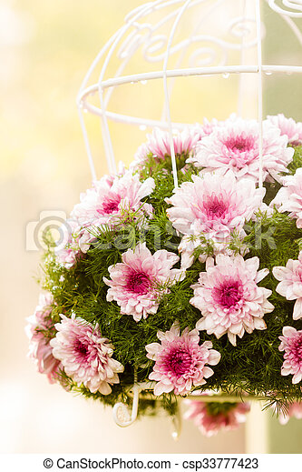 Bouquet made of Chrysanthemum - csp33777423