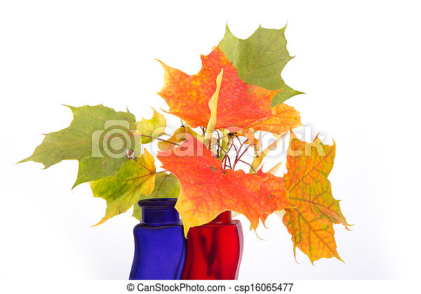 Bouquet of autumn leaves in bright colored vase on a white background - csp16065477