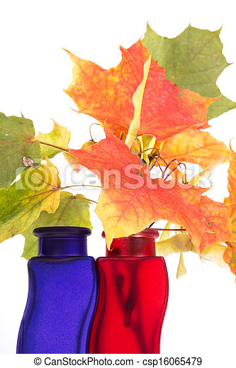 Bouquet of autumn leaves in bright colored vase on a white background - csp16065479