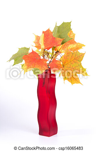 Bouquet of autumn leaves in bright colored vase on a white background - csp16065483