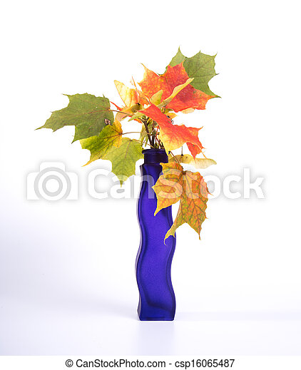 Bouquet of autumn leaves in bright colored vase on a white background - csp16065487