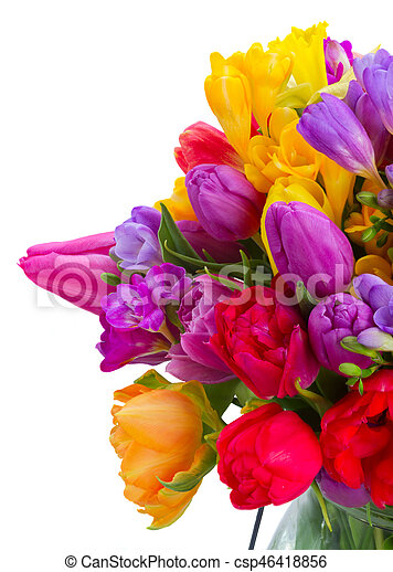 Bouquet of bright spring flowers bunch of bright spring flowers bouquet of bright spring flowers csp46418856 mightylinksfo