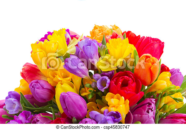 Bouquet Of Bright Spring Flowers Border Isolated On White Background
