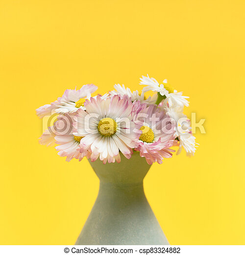 Bouquet of chamomile in vase on a bright yellow background. - csp83324882