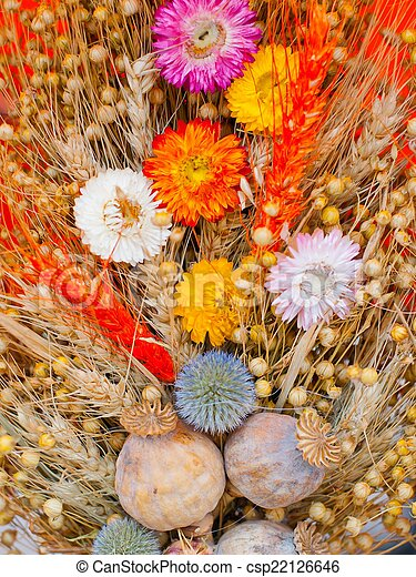 Bouquet of dry flowers - csp22126646
