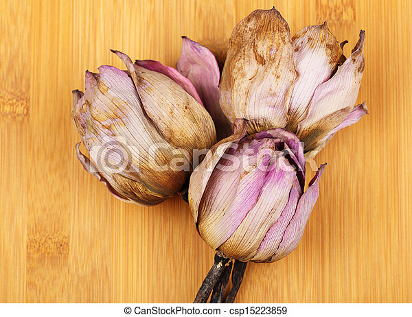 Bouquet Of Dry Lotus Flower