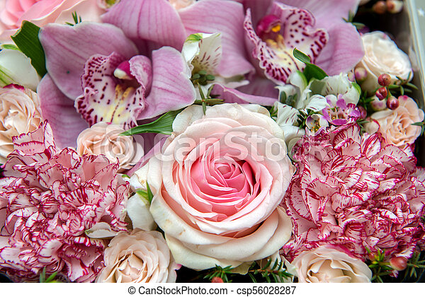 Bouquet of flowers as background. - csp56028287