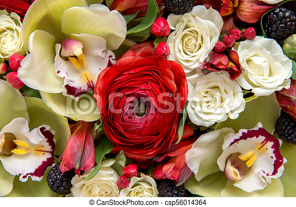 Bouquet of flowers as background. - csp56014364