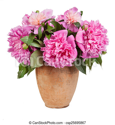 Bouquet of flowers in a vase old isolated on white background - csp25695867