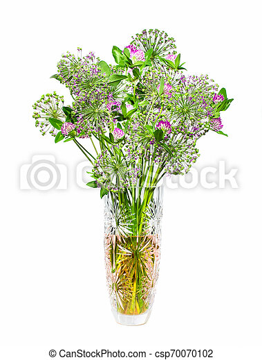 bouquet of flowers in a vase - csp70070102