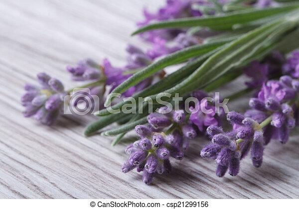 bouquet of fragrant lavender flowers - csp21299156