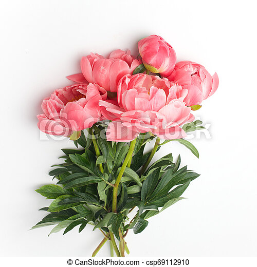 bouquet of fresh peonies on a white background in the center of the frame. flat lay, top view - csp69112910
