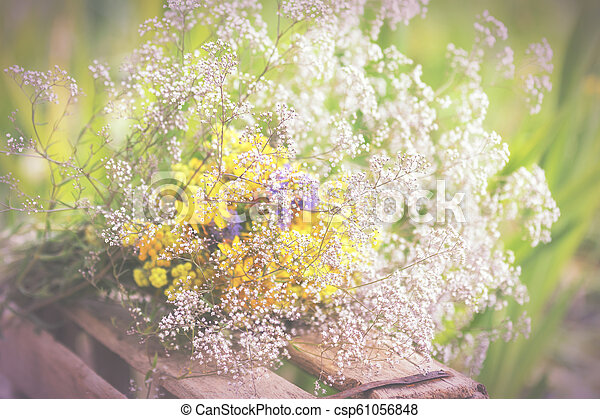 Bouquet of garden flowers and healing herbs - csp61056848