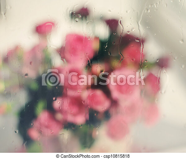 bouquet of pink roses - csp10815818