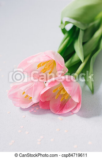 Bouquet of pink Tulip flowers, design concept. Mother's day - a beautiful soft pink bouquet, on a blue pastel background with pink confetti - csp84719611