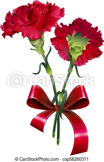 Bouquet Of Red Carnation Flower Isolated On White Vector Illustration