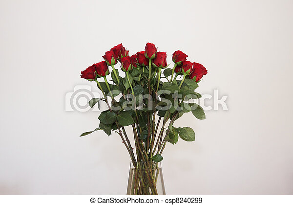 bouquet of red roses in a vase on white background - csp8240299