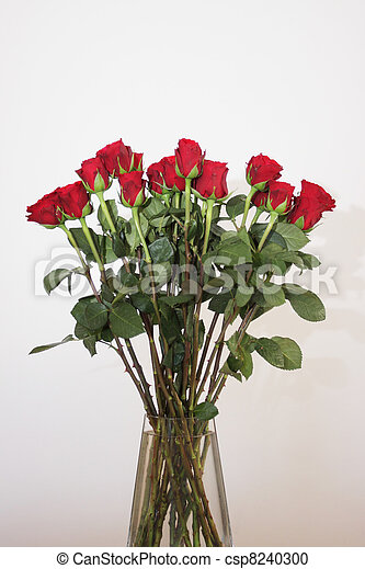 bouquet of red roses in a vase on white background - csp8240300