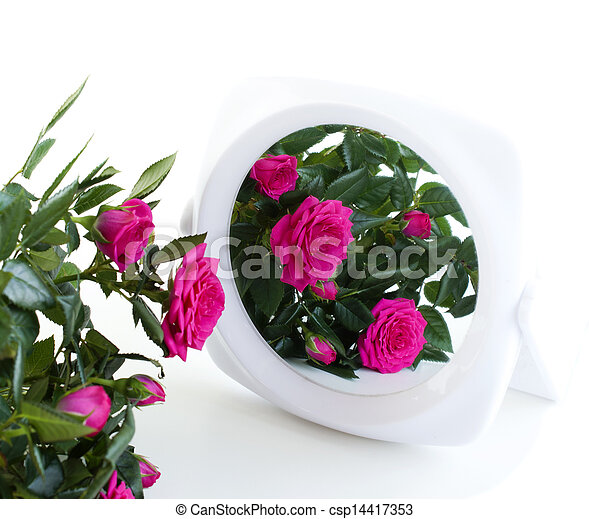 bouquet of roses and a mirror - csp14417353