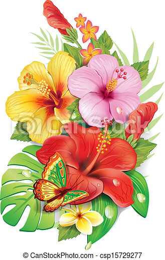Bouquet of tropical flowersv - csp15729277