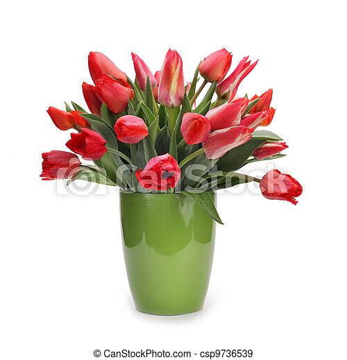 bouquet of tulip flowers - csp9736539