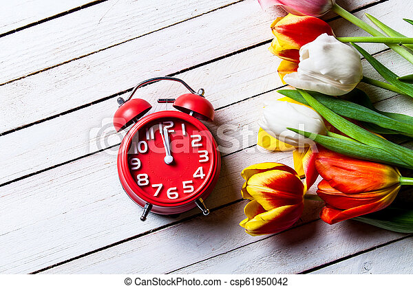 bouquet of tulips and clock - csp61950042