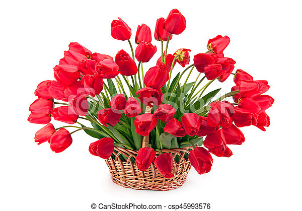 Bouquet of tulips in a basket. - csp45993576