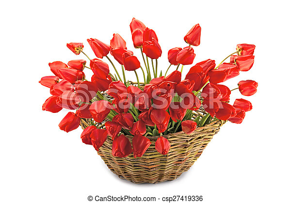 bouquet of tulips in a basket - csp27419336
