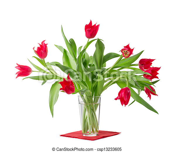 Bouquet of tulips on a white background - csp13233605