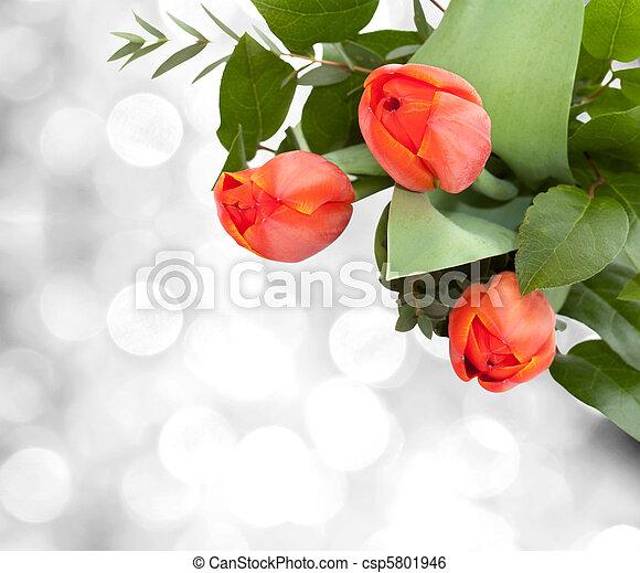 bouquet of tulips - csp5801946