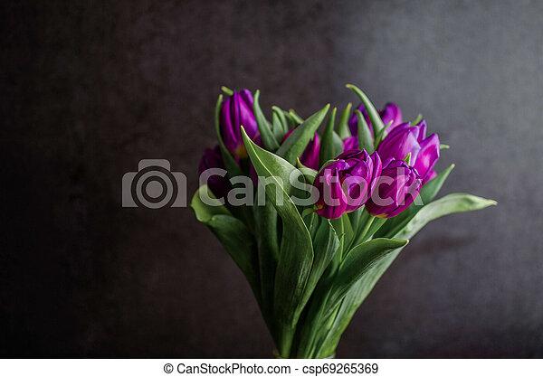 bouquet of tulips - csp69265369