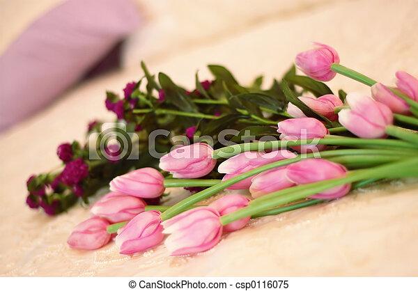 bouquet of tulips - csp0116075