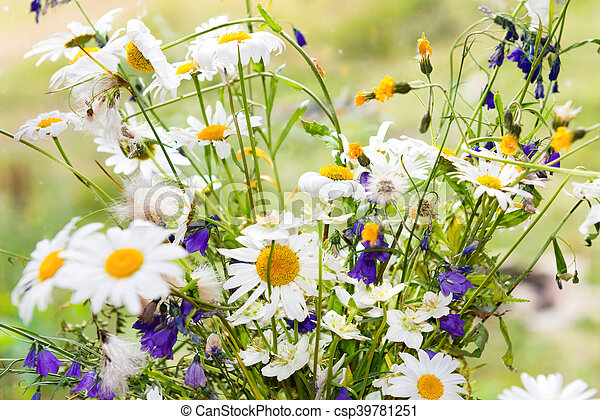 bouquet of white daisies bouquet of white flowers daisies and other