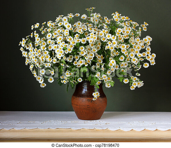 bouquet of white garden daisies on a green background. - csp78198470