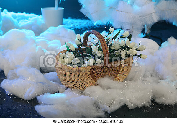 Bouquet of white tulips in a wattled basket on snow - csp25916403