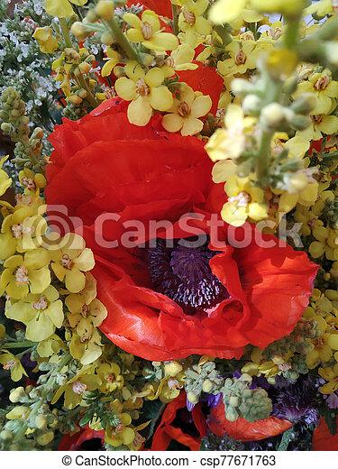 bouquet of wild flowers - csp77671763